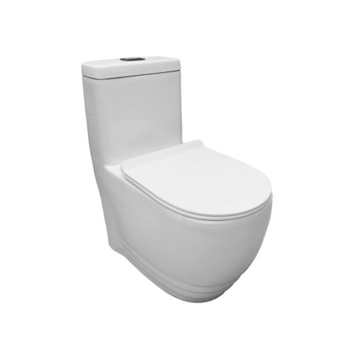 Baron W-368 One Piece Toilet Bowl